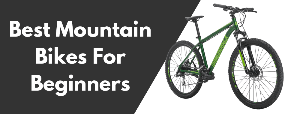 entry level mountain bikes for beginners