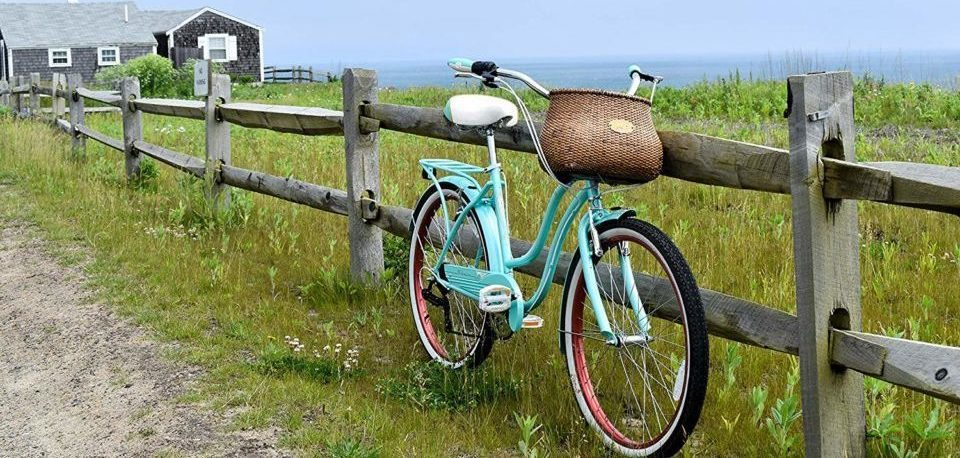 a bicycle on the grass near the sea