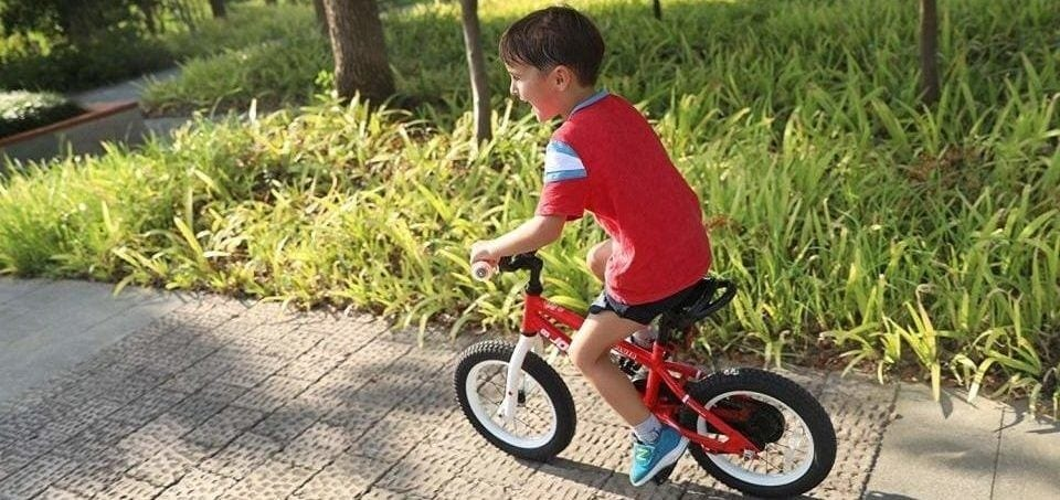 a boy drives his bike in a green area