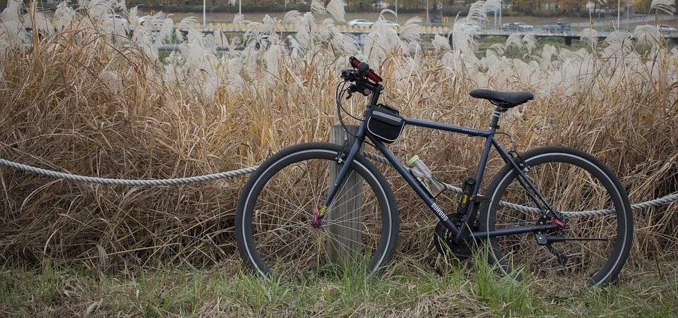 a hybrid bike on the grass