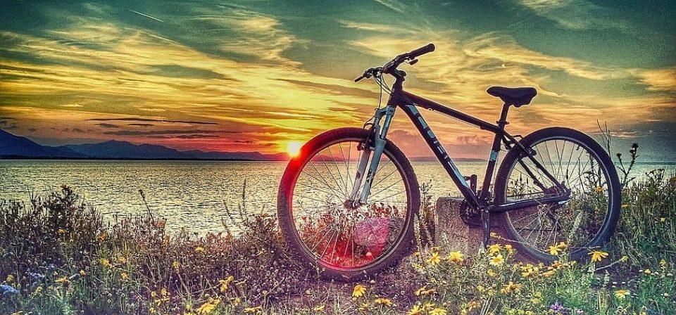 a hardtail mountain bike on the grass near the sea
